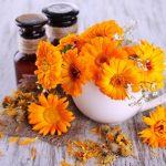 körömvirág és körömvirágkrém